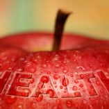 big-health